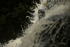 Iguazu11