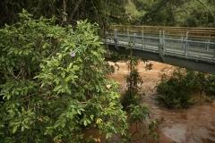 Iguazu17