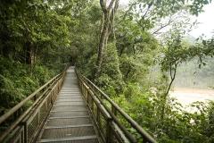 Iguazu6
