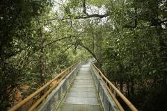 Iguazu15