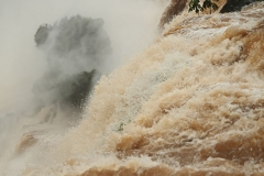 Iguazu23