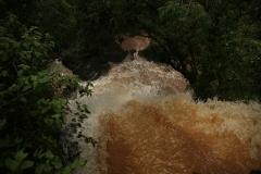 Iguazu33