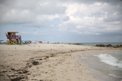 Mitch Beach