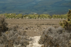 Península Valdés