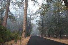 Smoky Yosemite