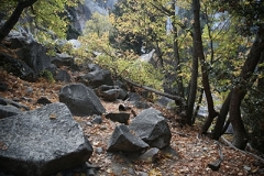L'automne au Yosemite
